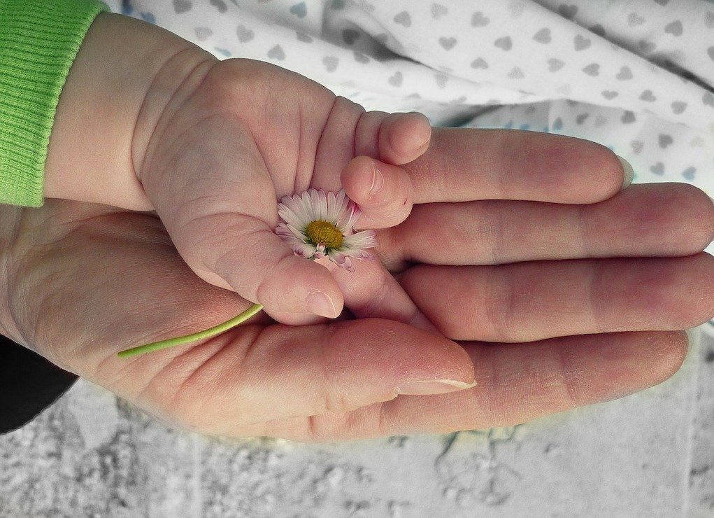 baby and mothers hand with flower 2021 census