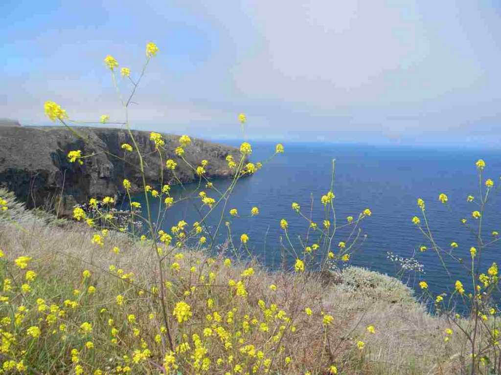 channel islands national park california